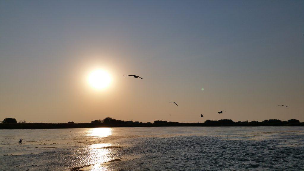 Rasaritul Soarelui in Murighiol